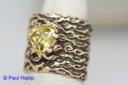 Gold ring, Kelp/seaweed band